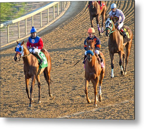 Horse Metal Print featuring the photograph Afterwards by Betsy Knapp