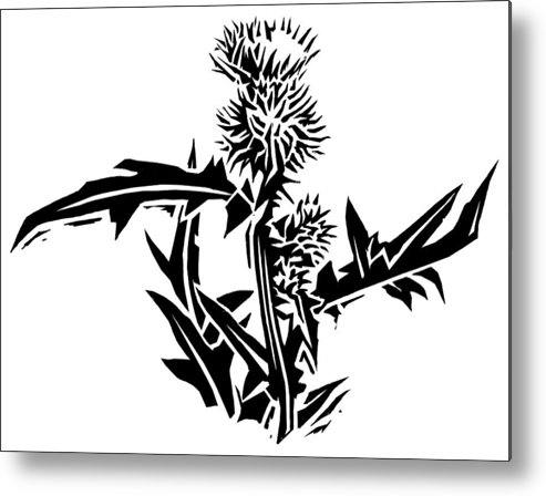 Thistle Metal Print featuring the photograph Thistle, Lino Print by Gary Hincks