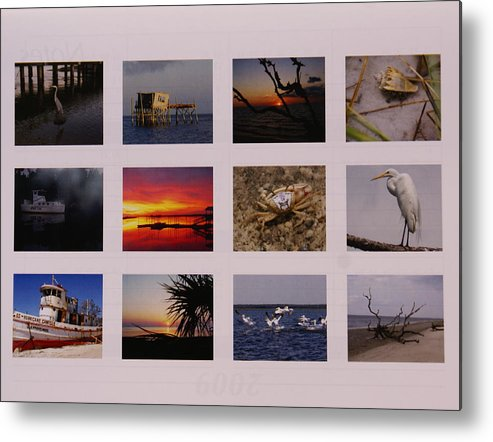 Florida Metal Print featuring the photograph 2008 Calendar Back Of Gulf Views Edition by Debbie May