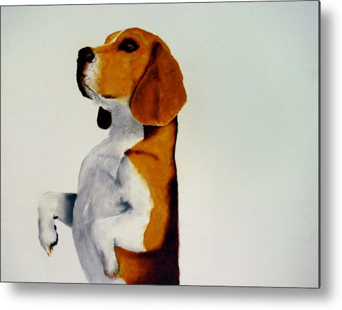 Beagle Metal Print featuring the painting Beagle by Dick Larsen