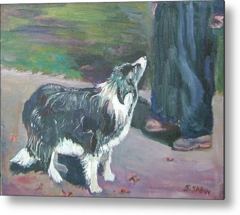 Dog Metal Print featuring the painting Border Collie by Saga Sabin
