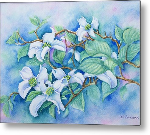 Floral Metal Print featuring the painting Dogwood by Conni Reinecke