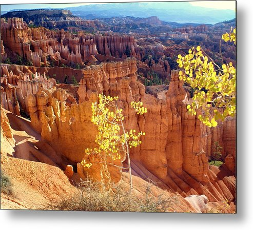 Bryce Canyon National Park Metal Print featuring the photograph Fall In Bryce Canyon by Marty Koch