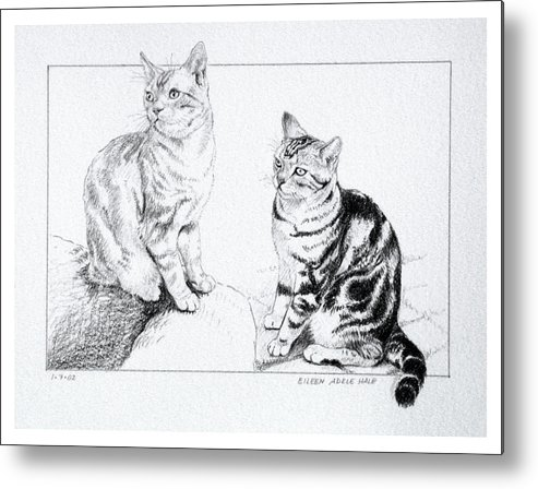 Portrait Metal Print featuring the drawing Fred And Ginger by Eileen Hale