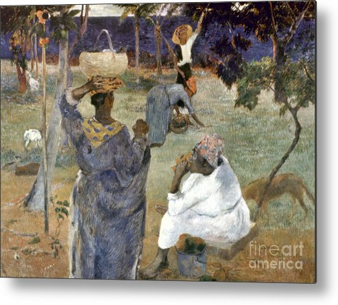 1887 Metal Print featuring the photograph Gauguin: Martinique, 1887 by Granger