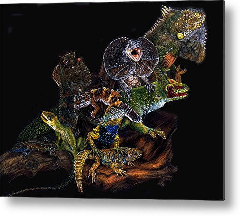 Lizards Metal Print featuring the drawing Gems And Jewels by Barbara Keith