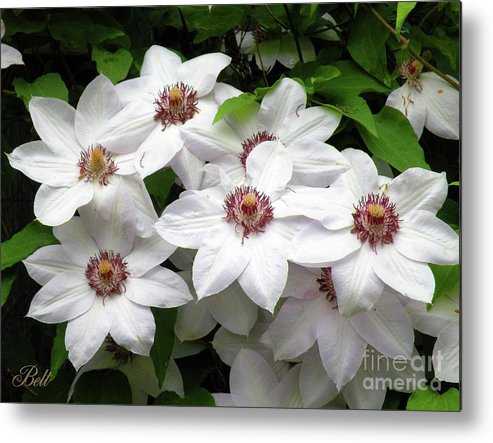 Floral Metal Print featuring the photograph God's Choir by Christine Belt