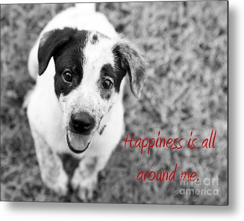 Puppy Metal Print featuring the photograph Happiness Is All Around Me by Amanda Barcon