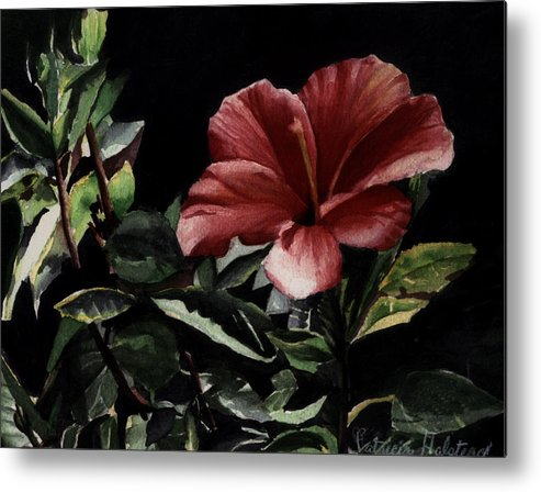 Watercolor Metal Print featuring the painting Hibiscus by Patricia Halstead