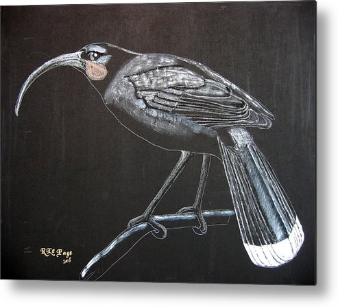 Huia Metal Print featuring the painting Huia by Richard Le Page