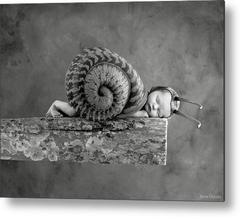 Black And White Metal Print featuring the photograph Julia Snail by Anne Geddes