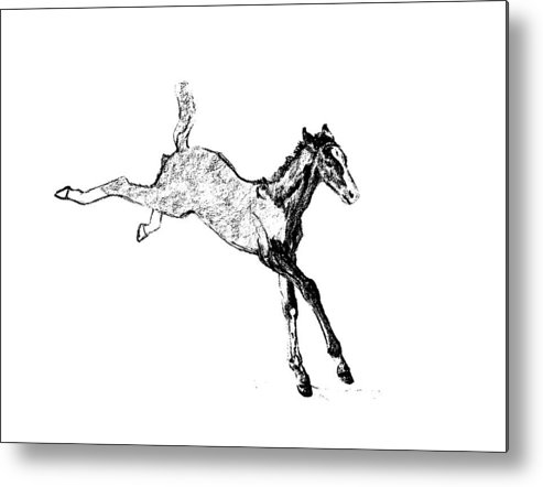 Horse Metal Print featuring the photograph Leaping Foal by JAMART Photography