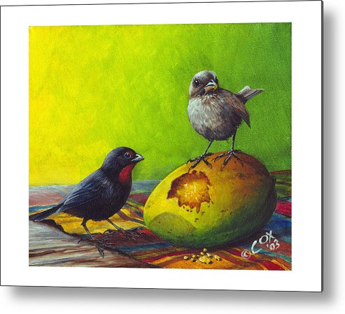 Chris Cox Metal Print featuring the painting Lesser Antillean Bullfinches And Mango by Christopher Cox