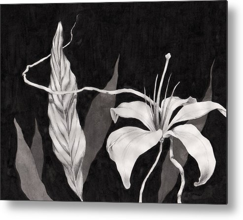 Ink Painting Metal Print featuring the drawing Lily In The Night by Jennifer McDuffie