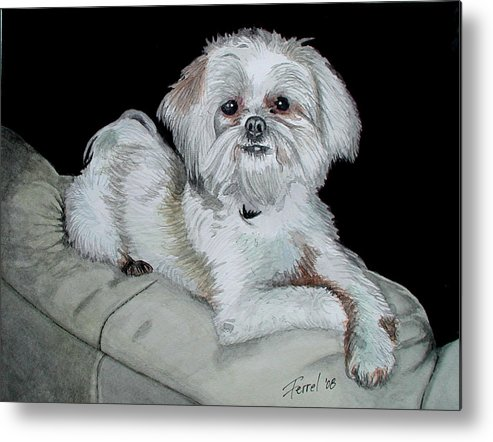 Dog Metal Print featuring the painting Miki Dog by Ferrel Cordle