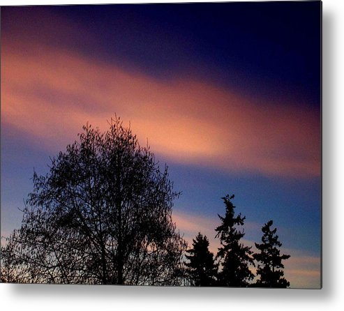 Morning Metal Print featuring the photograph Morning Flare by Kevin D Davis
