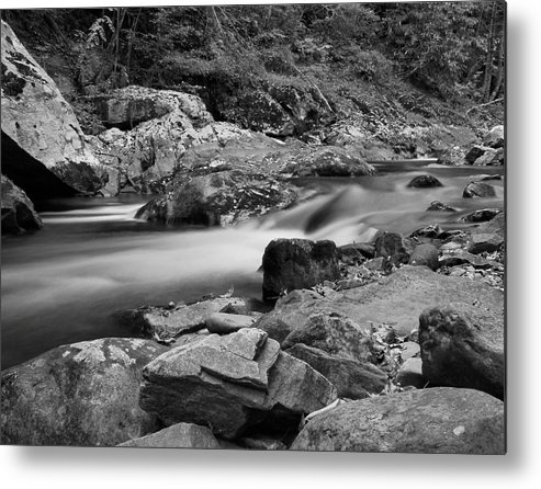 Natural Contrast Black And White Metal Print featuring the photograph Natural Contrast Black And White by Dan Sproul
