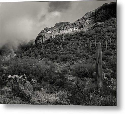 Organ Pipe Cactus National Monument Metal Print featuring the photograph Organ Pipe Arch by Joseph Smith