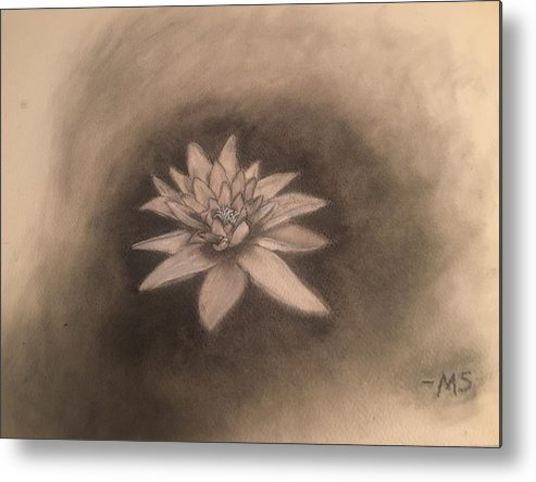 Water Lilly Metal Print featuring the drawing Out Of The Deep by Michelle Sarafian