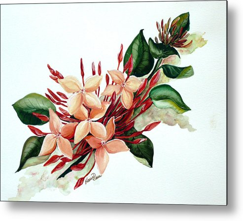 Floral Peach Flower Watercolor Ixora Botanical Bloom Metal Print featuring the painting Peachy Ixora by Karin Dawn Kelshall- Best