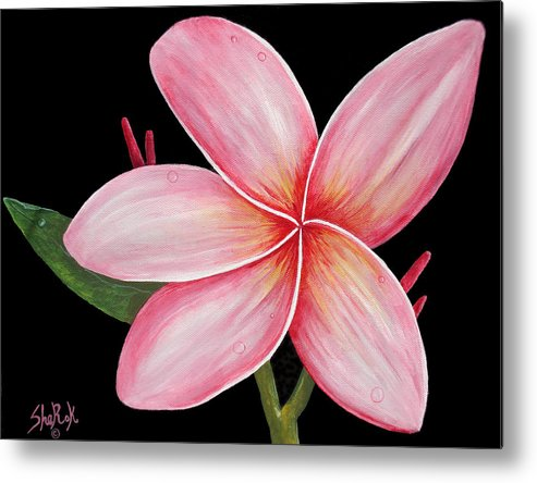 Floral Metal Print featuring the painting Plumeria by SheRok Williams