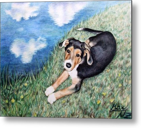 Dog Metal Print featuring the painting Puppy Max by Nicole Zeug