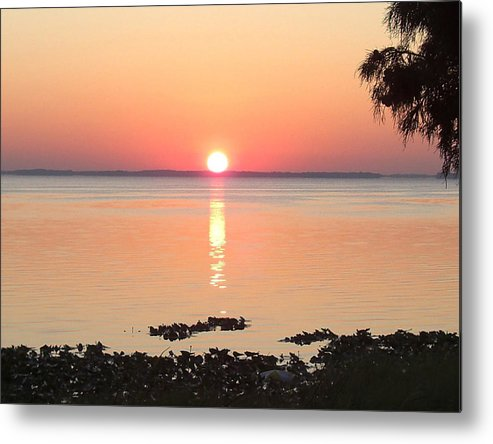 Sunrise-sunset Photographs Metal Print featuring the photograph Rising Sun by Frederic Kohli