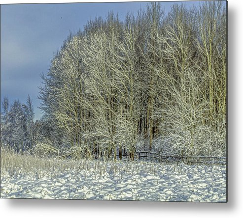 Snow Metal Print featuring the photograph Snowy Landscape #f3 by Leif Sohlman