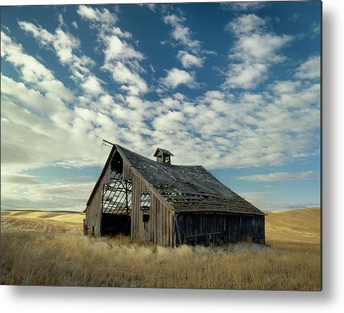 Palouse Metal Print featuring the photograph Steadfast On Little Alkali Flat by Jerry McCollum