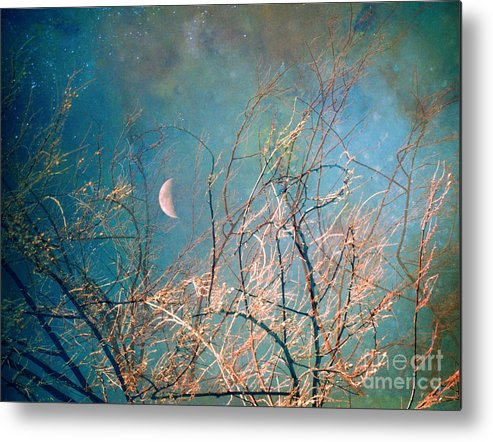 Moon Metal Print featuring the photograph The Messy House Of The Moon by Tara Turner