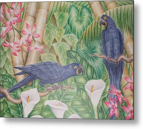 Tropical Landscape Flower Bird Metal Print featuring the drawing Two Macaws by Jubamo