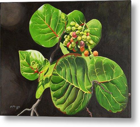 Nature Metal Print featuring the painting Uvas Playeras by Ada Astacio