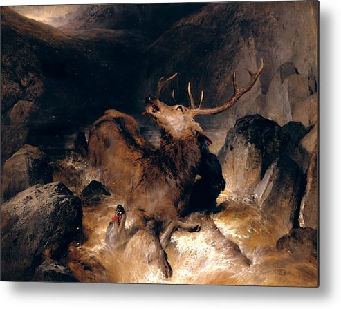 19th Century Art Metal Print featuring the painting Deer And Deer Hounds In A Mountain Torrent by Edwin Landseer