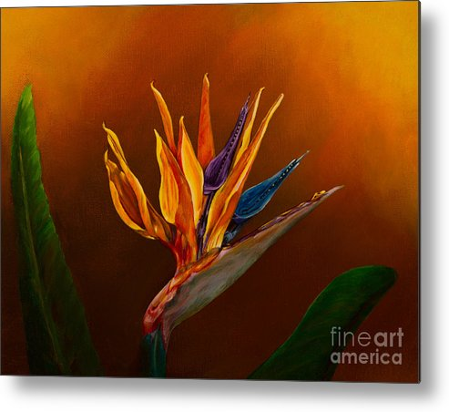 Bird Of Paradise Flower Metal Print featuring the painting Bird Of Paradise by Zina Stromberg