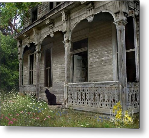 Rotting Metal Print featuring the photograph Cat House 1 by Tom Straub