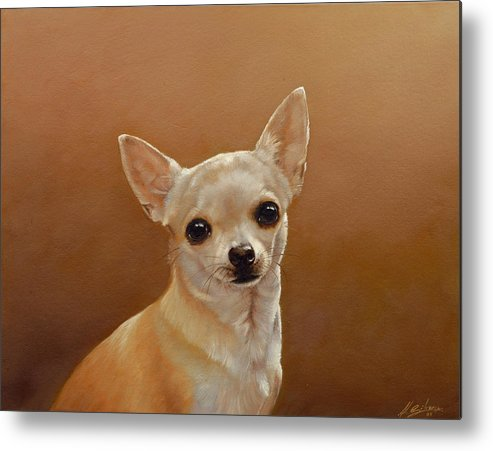 Chihuahua Metal Print featuring the painting Chihuahua I by John Silver