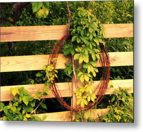 Fence Metal Print featuring the photograph Don't Fence Me In by Cricket Hackmann