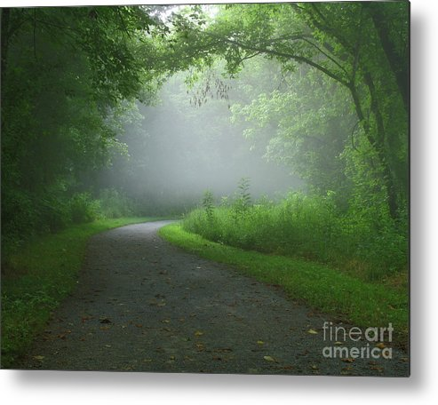 Green Metal Print featuring the photograph Mystery Walk by Douglas Stucky