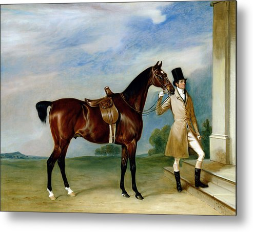 Horse; Docked Tail; Hunting Metal Print featuring the painting Miss Villebois Bay Hunter Held By A Groom by John E Ferneley