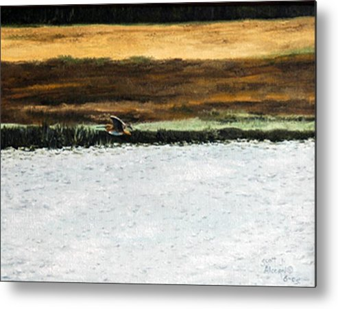 Wildlife Metal Print featuring the painting Over The Marsh by Scott Alcorn