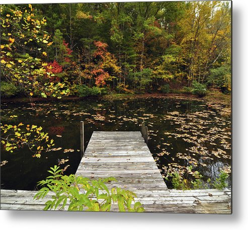 Pond Metal Print featuring the photograph Painted Pond by Theron Clore