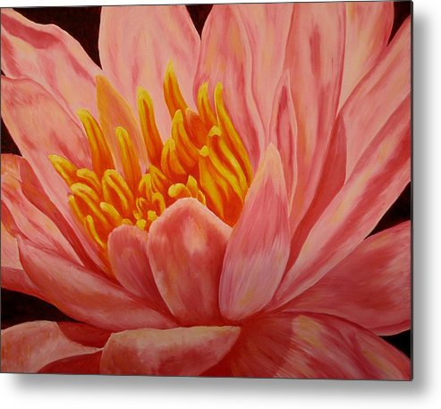 Oil Metal Print featuring the painting Pink Waterlily by Darla Brock