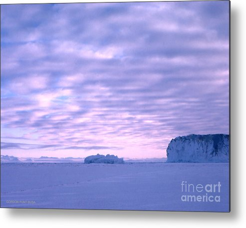 Cape Evans Metal Print featuring the photograph Ross-iceshelf-g.punt-2 by Gordon Punt