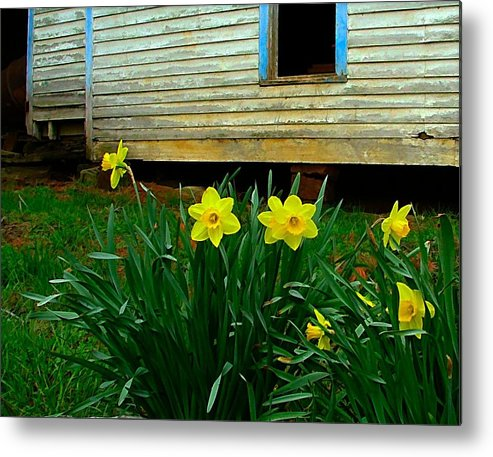 Spring Metal Print featuring the photograph Spring At The Old Home Place by Julie Dant