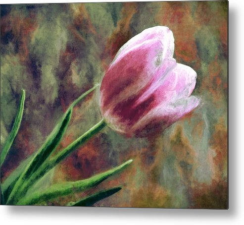 Flowers Metal Print featuring the photograph Spring Love Xvii by Tina Baxter