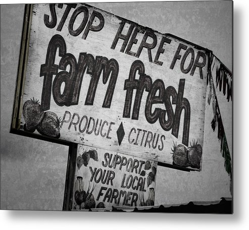 Florida Metal Print featuring the photograph Stop Here by Joan Carroll