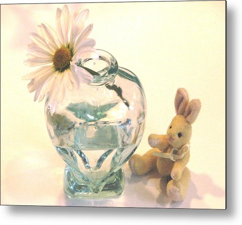 Daisies Metal Print featuring the photograph Whispers Of Spring by Angela Davies