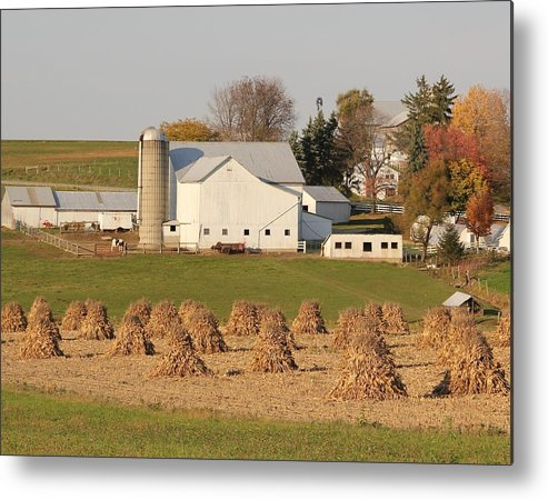 Corn Metal Print featuring the photograph Amish Countryside by Donna Bosela