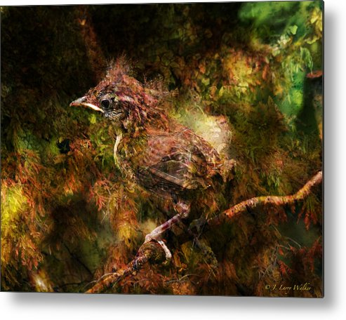 J Larry Walker Metal Print featuring the digital art Baby Wren First Fly by J Larry Walker