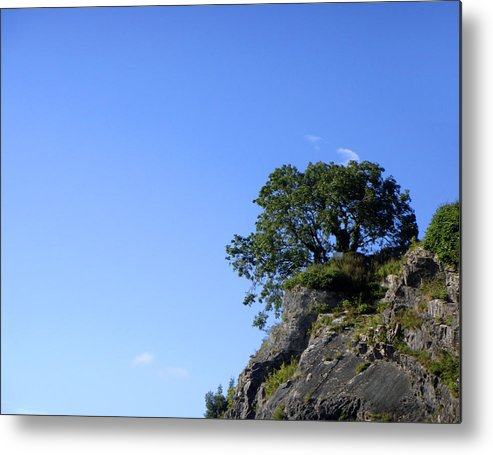 Tree Metal Print featuring the photograph Contemplating The Unreachable by Roberto Alamino